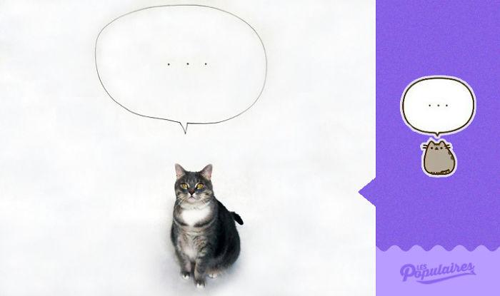 gato pensando
