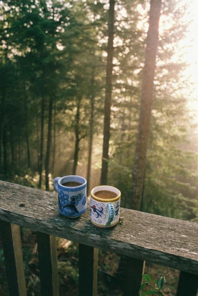 Par de tazas de chocolate en balcón de bosque