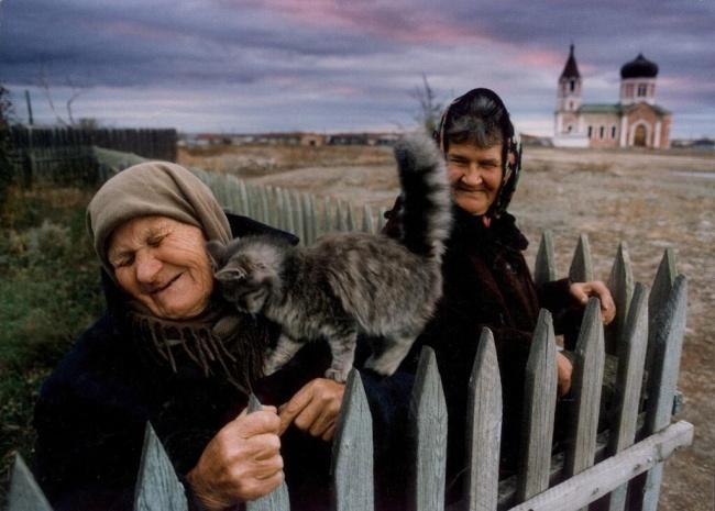 Gato molestando a dueñas