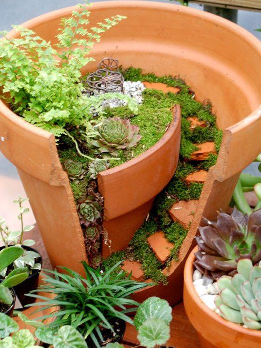 jardín miniatura de maceta rota 6