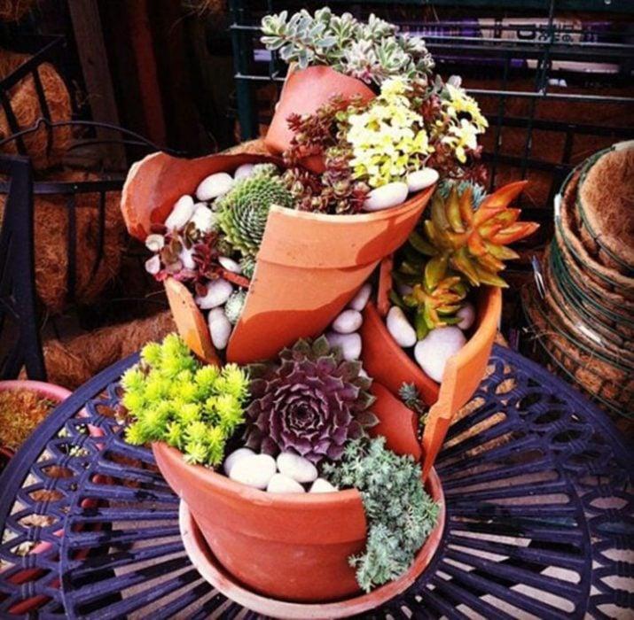 jardín miniatura de maceta rota 15
