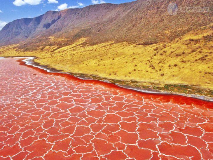 Lago naranja en campo