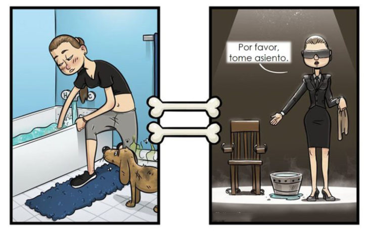 Baño temor para perros