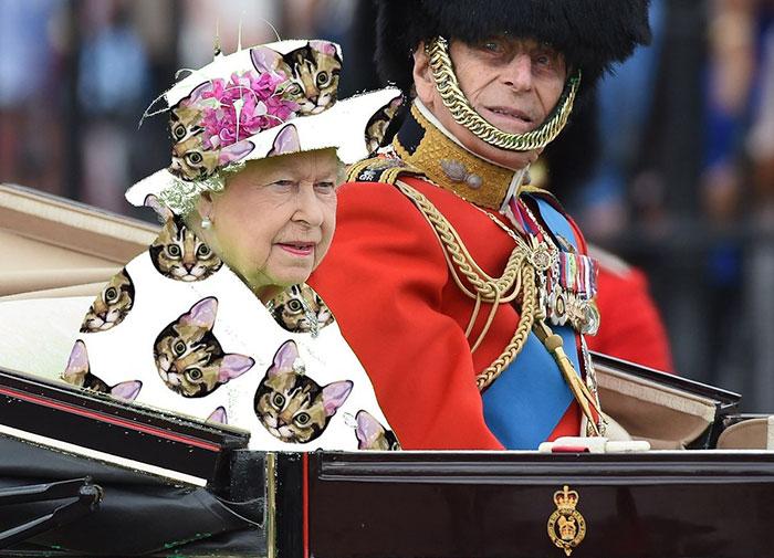 Batalla Photoshop: Reina Isabel II usando un vestido de gatos