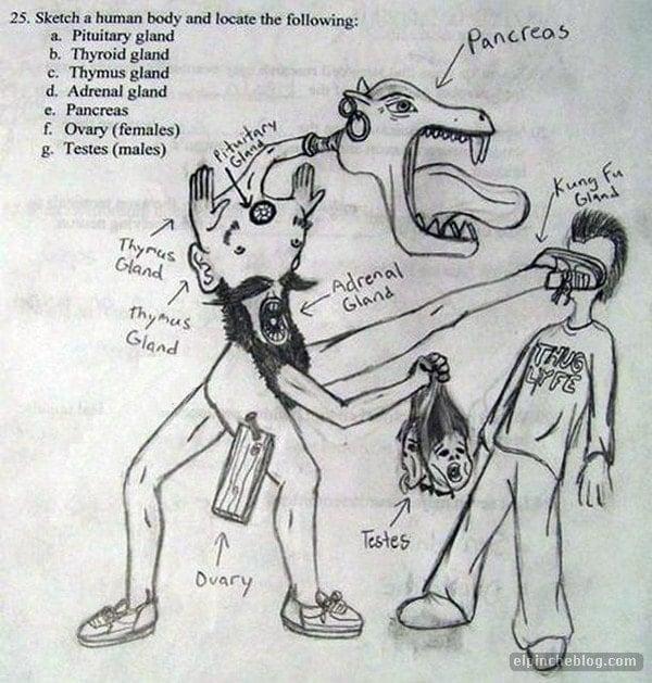 Mutante en examen