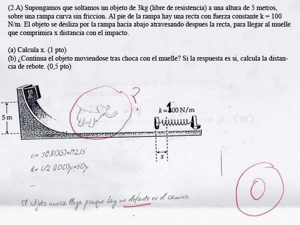 Elefante dibujado en examén