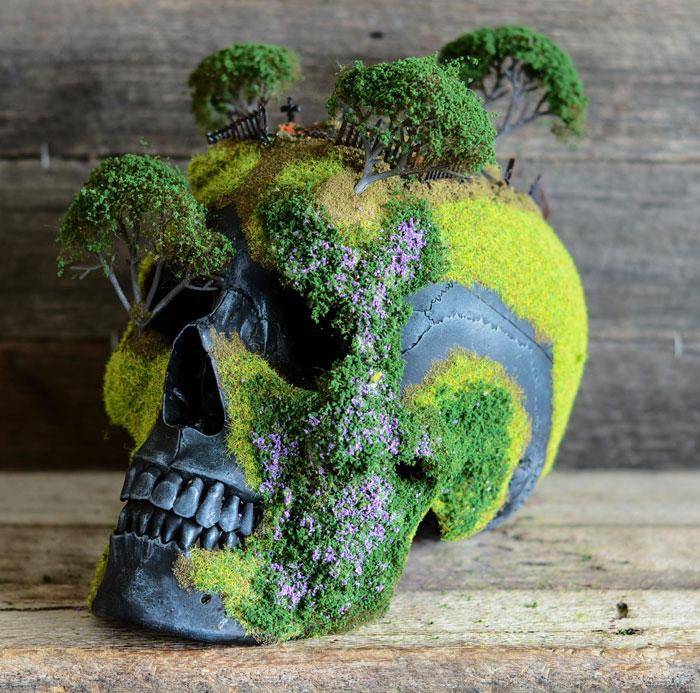 cráneo bonsai 3