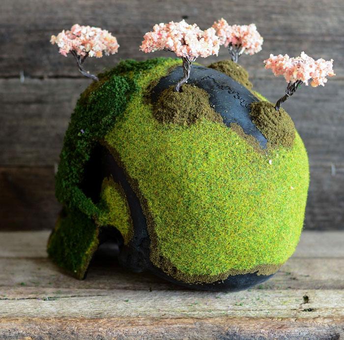 Cráneo bonsai 4