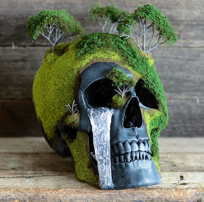 cráneo bonsai 5