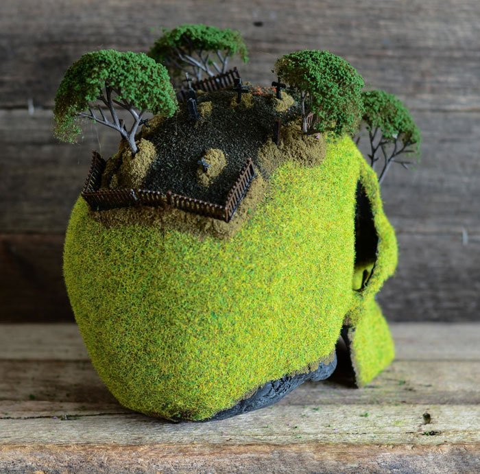 cráneo bonsai 6