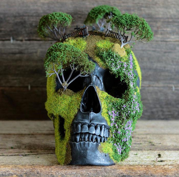 cráneo bonsai 8