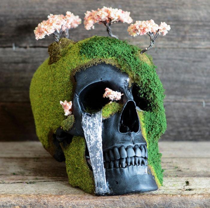 Cráneo bonsai 1