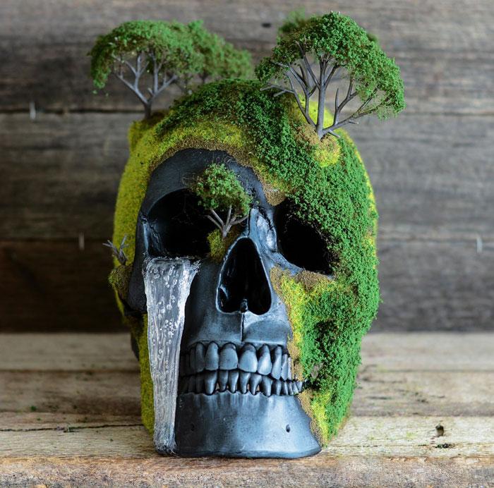 cráneo bonsai