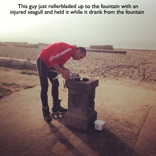 hombre dando agua a paloma