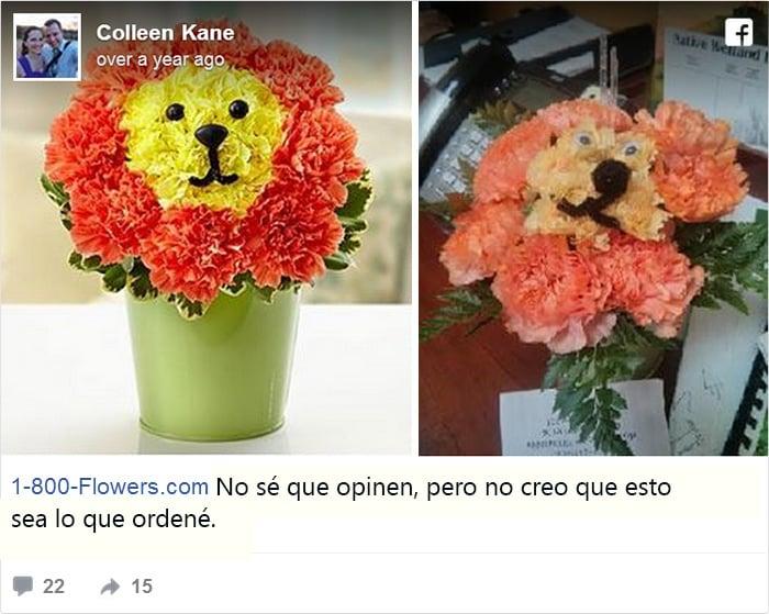 De un lado un arreglo de flores que asemeja un tierno leon, del otro lado las flores separadas y rotas