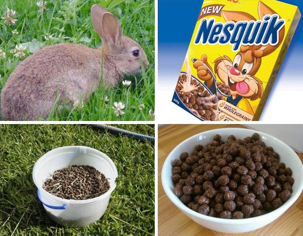 Conejo, popó de conejo; Nesquik, bolitas de Nesquik
