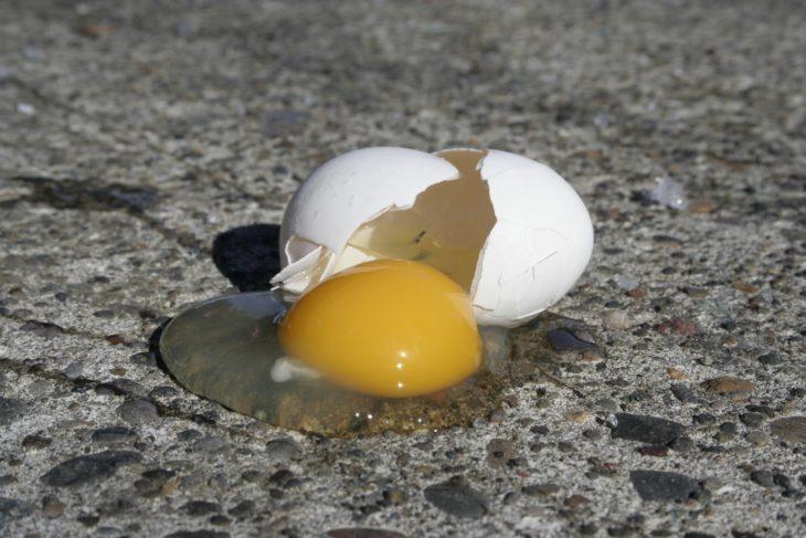 huevo tirado en la carretera