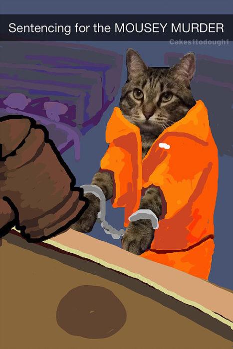snapchat gato sentenciado por matar ratón