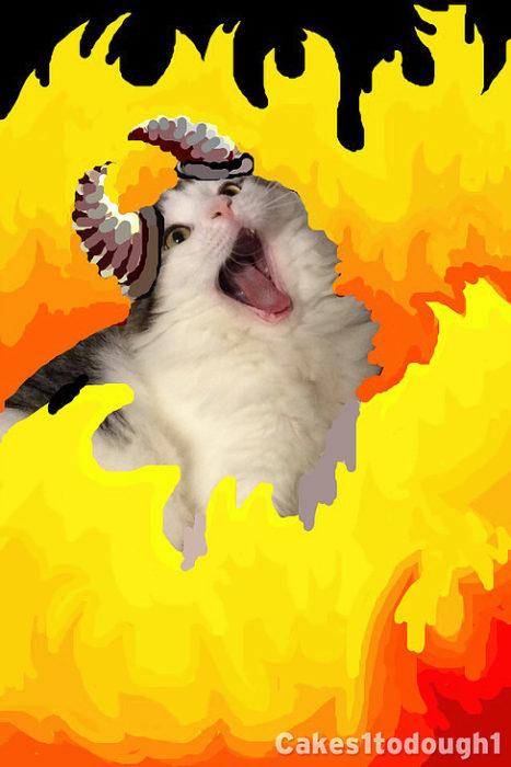 snapchat gato en el infierno