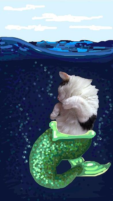 snapchat gato con cola de sirena