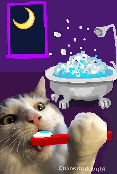 snapchat gato lavándose los dientes