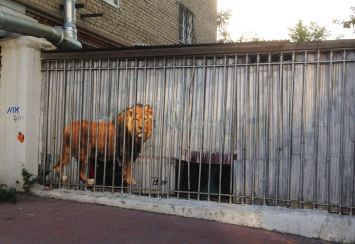 Graffitti de un leòn enjaulado