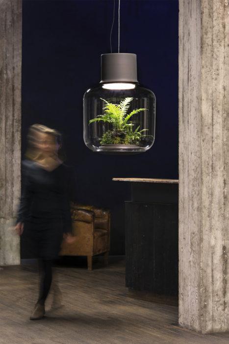 lampara terrarium