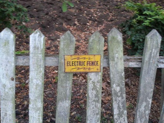 Reja eléctrica