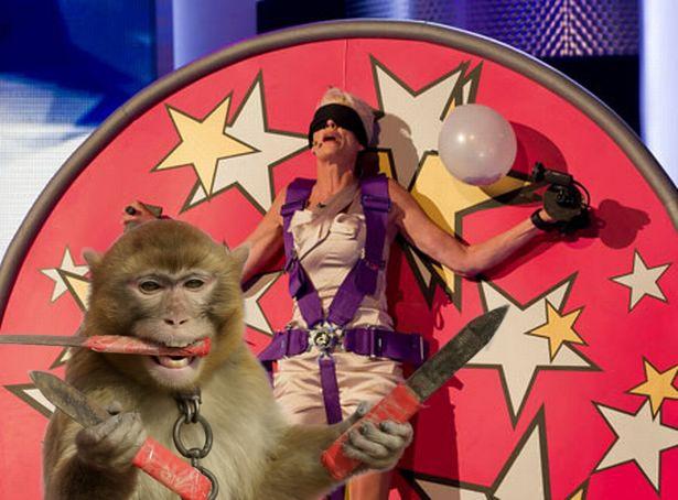 mono tirando dagas a persona