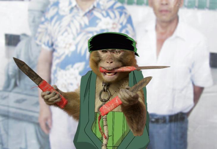 mono con chaleco verde sosteniendo cuchillos