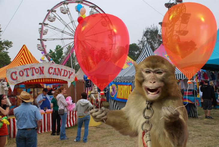 mono sosteniendo un par de globos en parque de diversiones