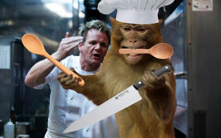 mono con chef