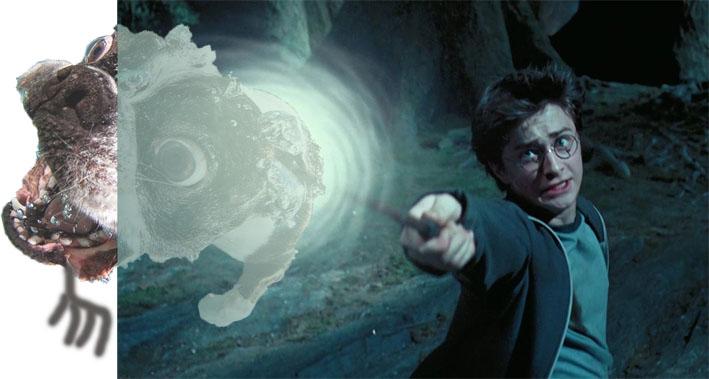 Photoshop Harry Potter apuntando con su varita y de la punta de su varita sale el un perro