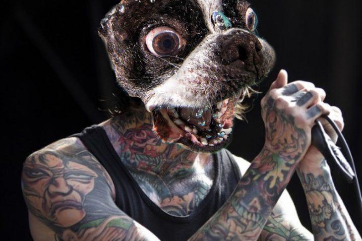 Photoshop un rockero en un concierto pero le pusieron la cara de un perro