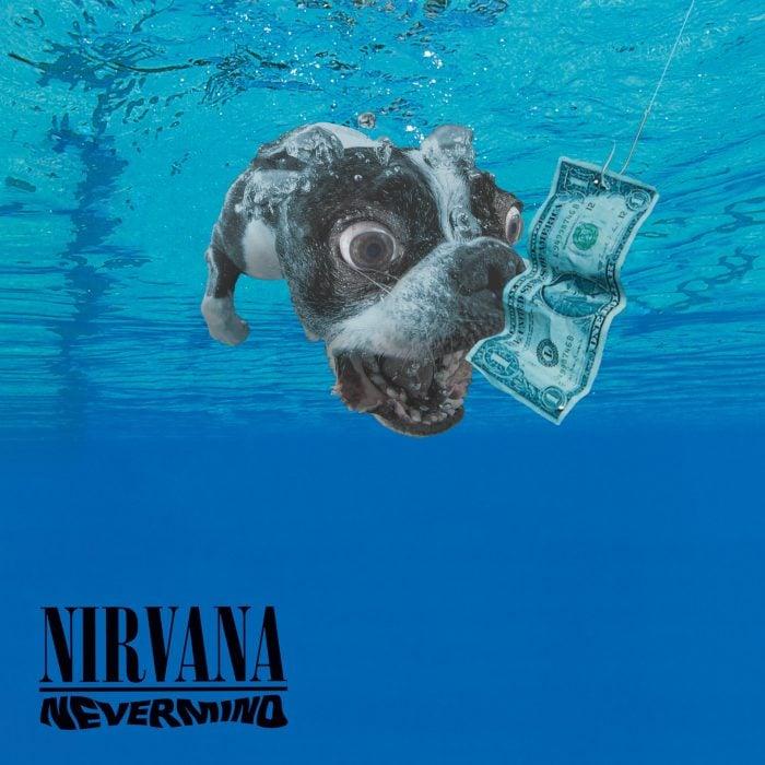 Photoshop perro sumergido en agua con la portada del disco de Nirvana