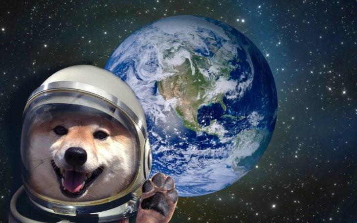 perro con traje de astronauta en el espacio exterior