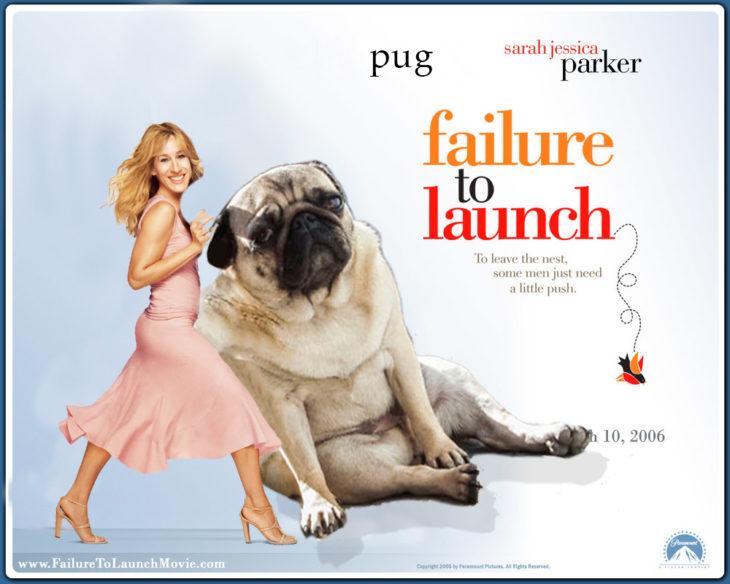 Photoshop pug triste en cartel de película romántica