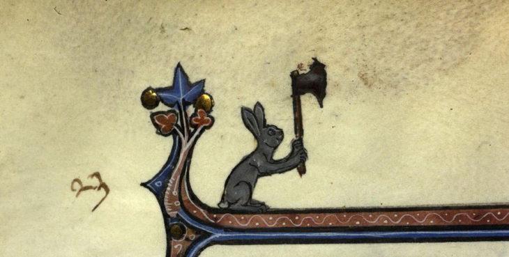 conejo con hacha ilustracion