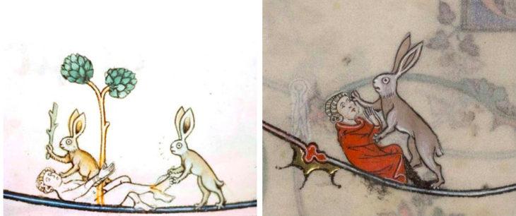 conejo asesino en dos viñetas