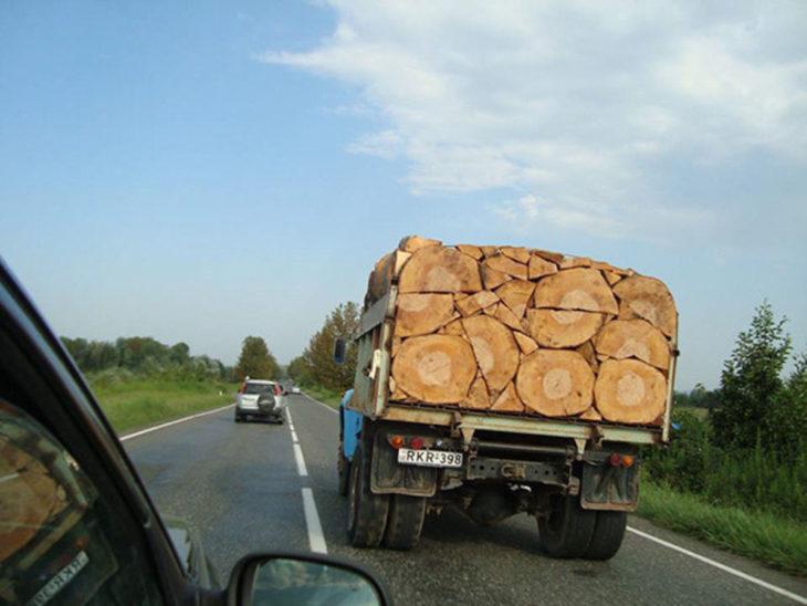 madera cortada a la perfección