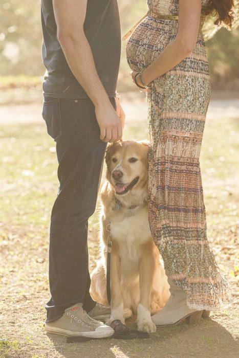 perrito con pareja embarazada
