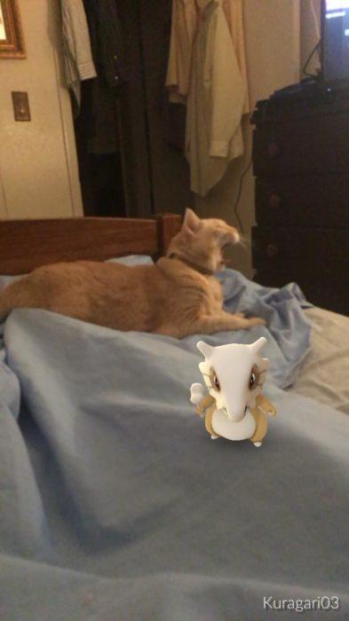 Un pokemón en tu cama al lado de tu gato