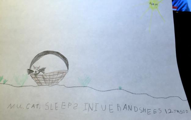 dibujo de un gato, hecho por un niño