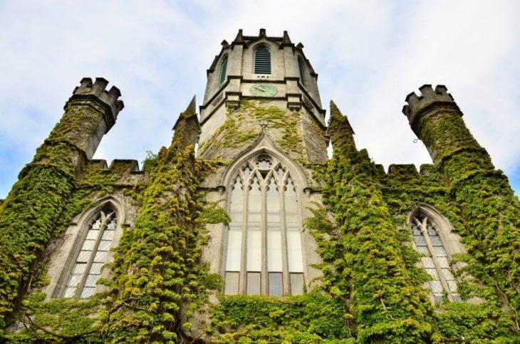 hermoso castillo cubierto de plantas