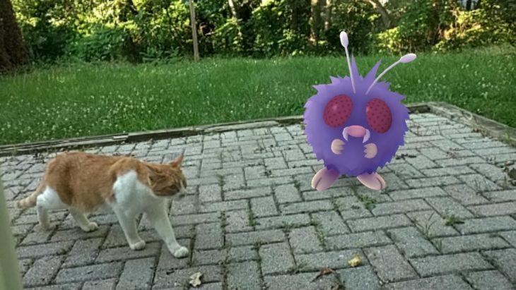 Un pokemón en el jardin mientras tu gato pasea