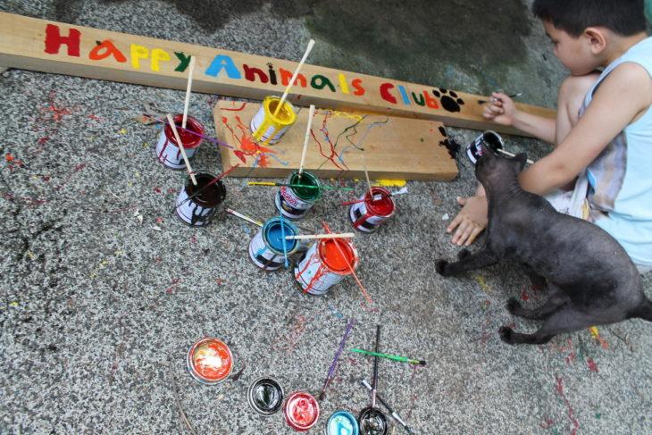 niño pintando refugio de animales