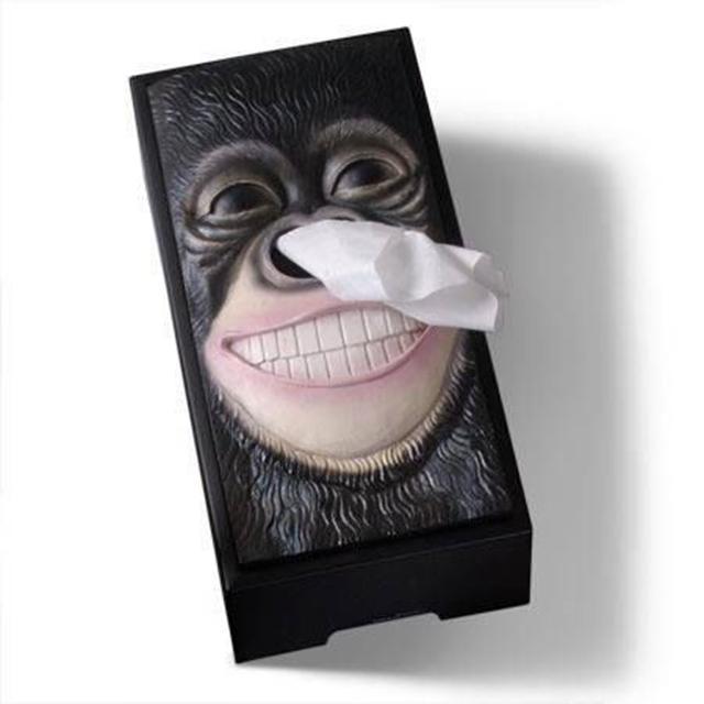 caja de pañuelos de primate