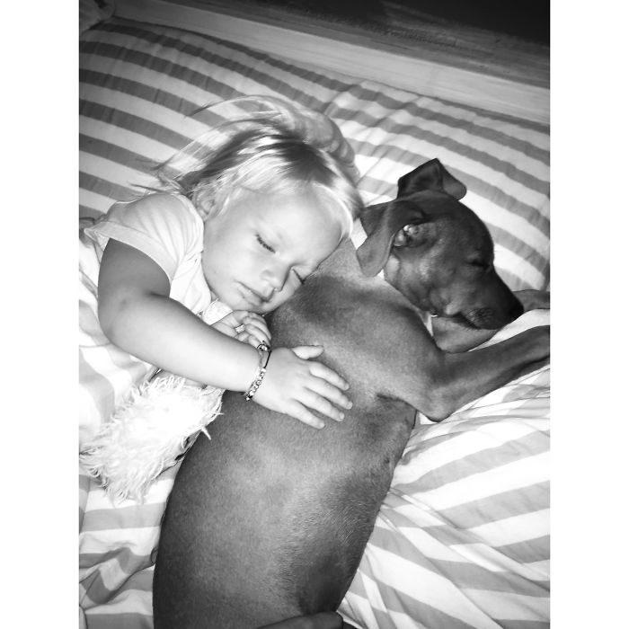 niña dormida abrazando a un perro