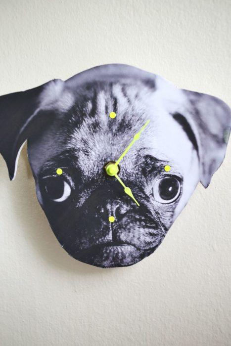 reloj de pared de perro