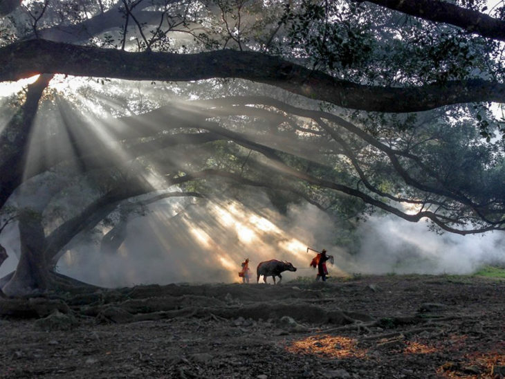 fotografía ganadora 2016 tomada con iphone, viaje